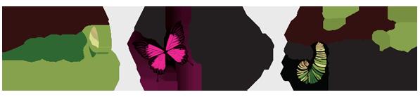 Logo Design P3 agency