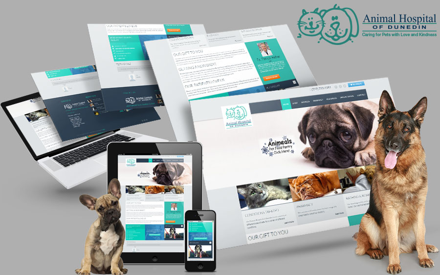 Responsive Website Design | P3 agency